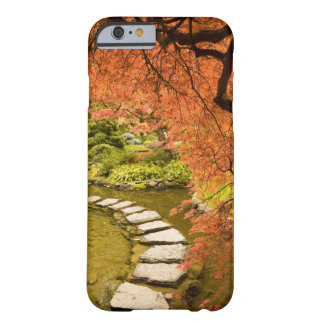 CANADA, British Columbia, Victoria. Autumn Barely There iPhone 6 Case