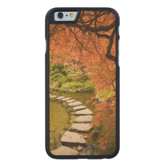 CANADA, British Columbia, Victoria. Autumn Carved Maple iPhone 6 Slim Case