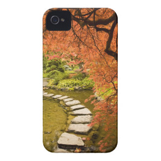 CANADA, British Columbia, Victoria. Autumn iPhone 4 Case
