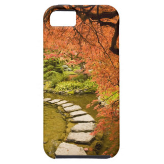 CANADA, British Columbia, Victoria. Autumn iPhone SE/5/5s Case