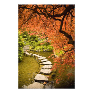 CANADA, British Columbia, Victoria. Autumn Photographic Print