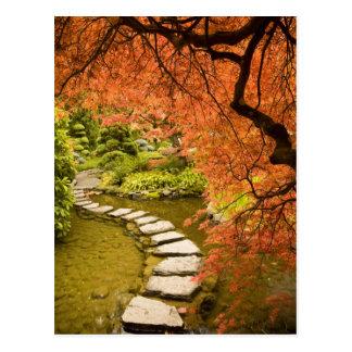 CANADA, British Columbia, Victoria. Autumn Postcard