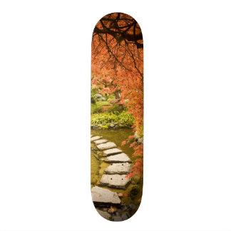CANADA, British Columbia, Victoria. Autumn Skateboard