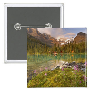 Canada, British Columbia, Yoho National Park. 2 Button
