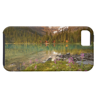 Canada, British Columbia, Yoho National Park. 2 iPhone SE/5/5s Case
