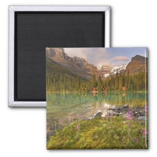 Canada, British Columbia, Yoho National Park. 2 Fridge Magnets
