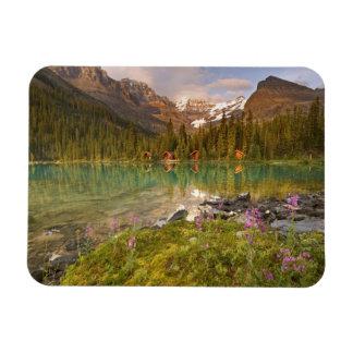 Canada, British Columbia, Yoho National Park. 2 Rectangular Magnets