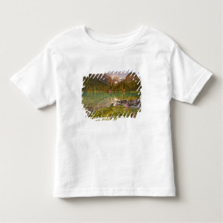 Canada, British Columbia, Yoho National Park. 2 Toddler T-shirt