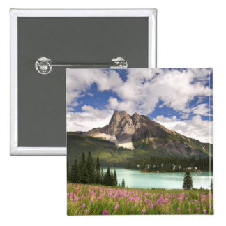 Canada, British Columbia, Yoho National Park. 3 Button