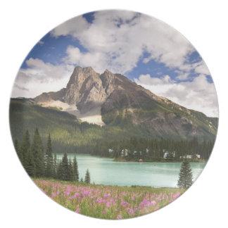 Canada, British Columbia, Yoho National Park. 3 Plate
