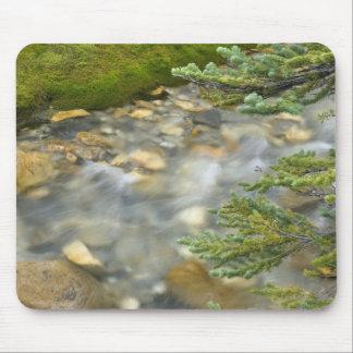 Canada, British Columbia, Yoho National Park. 4 Mouse Pad