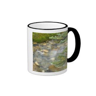 Canada, British Columbia, Yoho National Park. 4 Ringer Coffee Mug