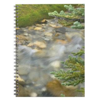 Canada, British Columbia, Yoho National Park. 4 Spiral Note Books