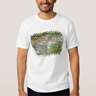 Canada, British Columbia, Yoho National Park. 4 T Shirt