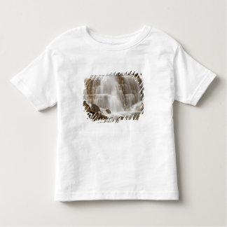 Canada, British Columbia, Yoho National Park. Tee Shirts