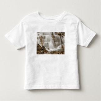 Canada, British Columbia, Yoho National Park. Toddler T-shirt