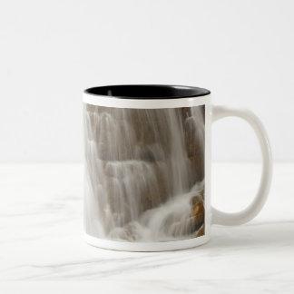 Canada, British Columbia, Yoho National Park. Two-Tone Coffee Mug