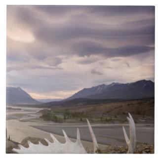 Canada, British Columbia, Yukon Territory, Alsek Tile