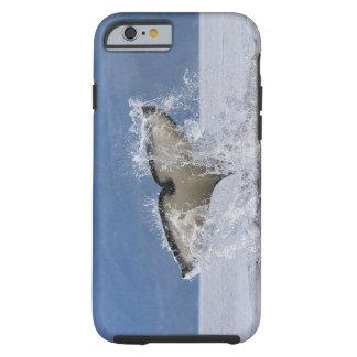 Canadá, Columbia Británica, isla de Vancouver, Funda Para iPhone 6 Tough