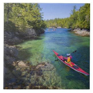 Canadá, Columbia Británica, isla de Vancouver. Mar Azulejo Cuadrado Grande