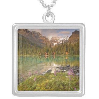Canadá, Columbia Británica, parque nacional de Colgante Cuadrado