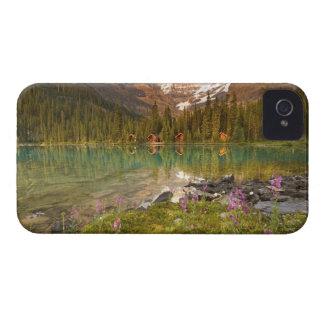 Canadá, Columbia Británica, parque nacional de iPhone 4 Case-Mate Cobertura