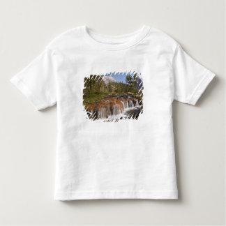 Canadá, Columbia Británica, parque nacional de Tshirt