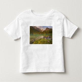 Canadá, Columbia Británica, parque nacional de Tee Shirts