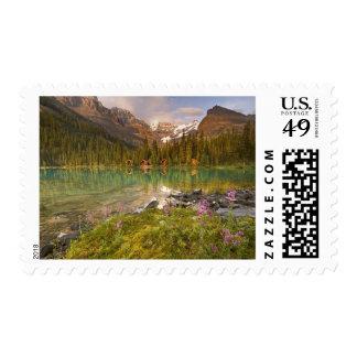 Canadá, Columbia Británica, parque nacional de Sellos