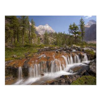 Canadá, Columbia Británica, parque nacional de Postal