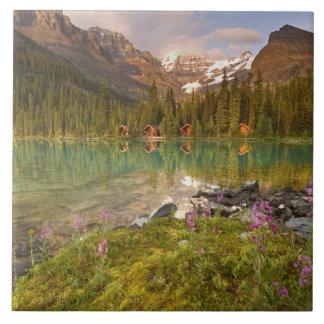 Canadá, Columbia Británica, parque nacional de Yoh Azulejo Cuadrado Grande