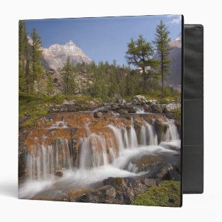 """Canadá, Columbia Británica, parque nacional de Yoh Carpeta 1 1/2"""""""