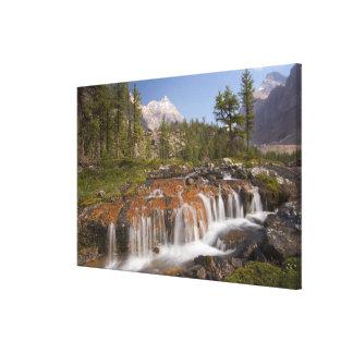 Canadá, Columbia Británica, parque nacional de Yoh Impresión En Lona Estirada