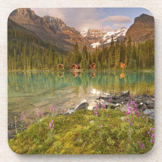 Canadá, Columbia Británica, parque nacional de Yoh Posavasos De Bebida