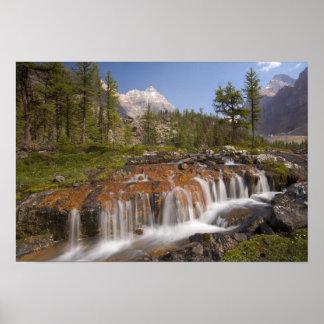 Canadá, Columbia Británica, parque nacional de Yoh Póster
