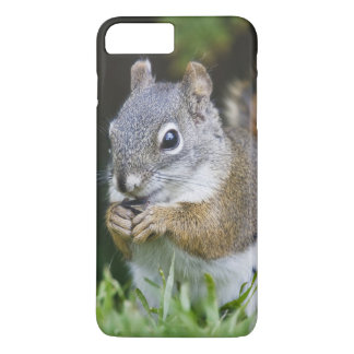 Canadá, Columbia Británica, pino de la ardilla Funda iPhone 7 Plus