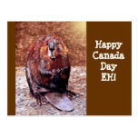 Canada Day Beaver Postcards