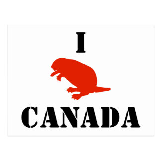 Canada Day Beaver Red White Postcard