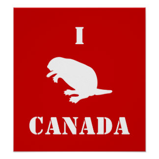 Canada Day Beaver White Red Poster