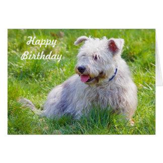 Cañada de la tarjeta del feliz cumpleaños del perr