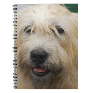 Cañada del cuaderno de Imaal Terrier