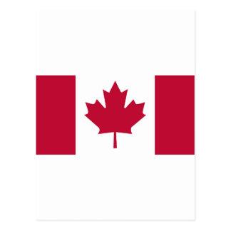 Canada Flag Maple Leaf design Postcard