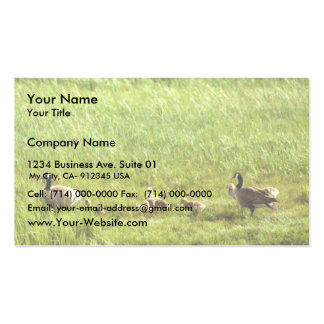 Canada geese and brood Double-Sided standard business cards (Pack of 100)
