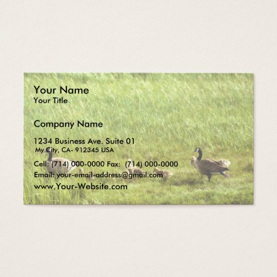 Canada geese and brood business card