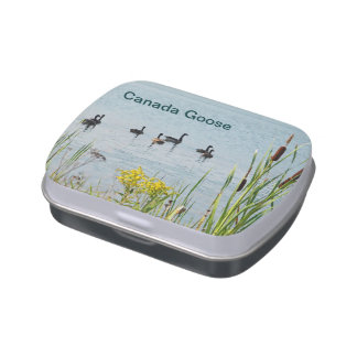 Canada Geese And Cattails Candy Tins