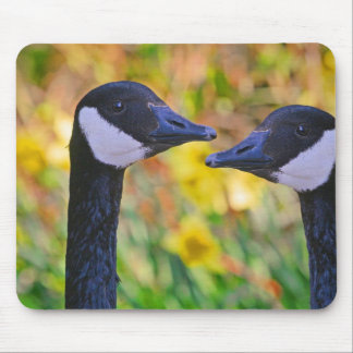 Canada Geese and Daffodils Mouse Pad