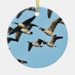 Canada Geese Flock in Flight Christmas Ornaments