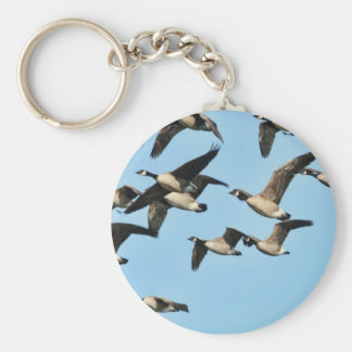 Canada Geese Flock in Flight Keychains