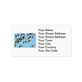 Canada Geese Flock in Flight Label
