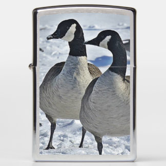 Canada Geese in the Winter Lighter
